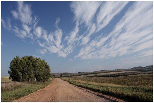 Прокуратура Кіровоградщини вимагає повернути державі особливо цінні землі вартістю 13 млн. грн