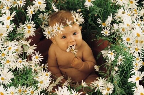 http://www.perunica.ru/uploads/posts/2010-07/1278833863_annageddes006.jpg
