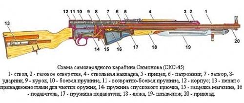 Выбор нарезного ружья