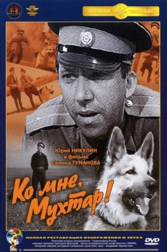 Фильм Ко мне, Мухтар!