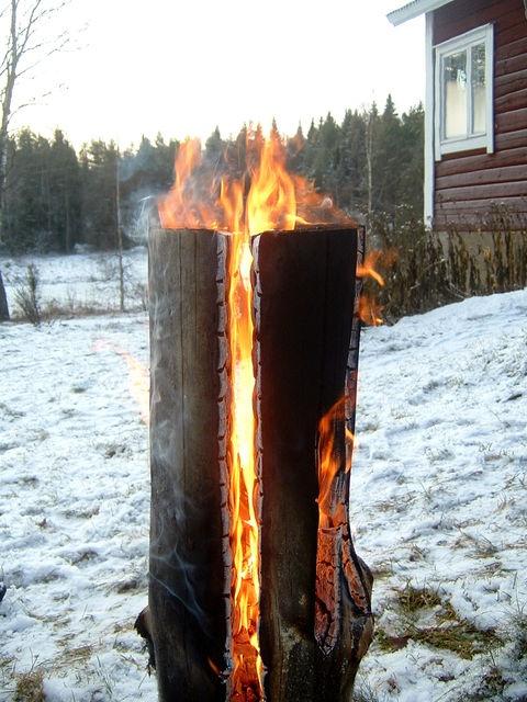 Как развести костёр зимой. Таёжная свеча.