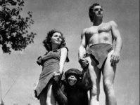 Эффект сотой обезьянки (что-же делать лично мне?)
