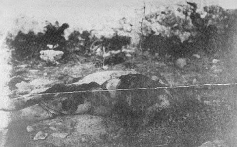 Красный устрашение на России. 0918-1923