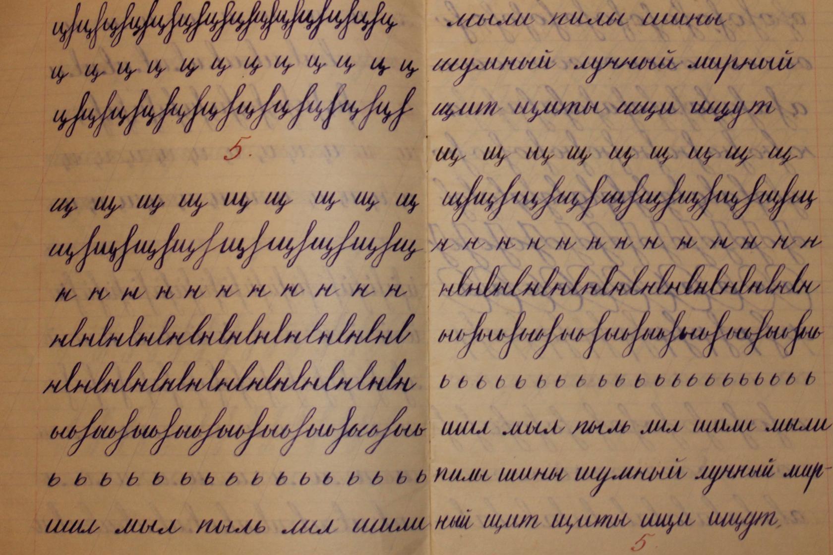 Прописи для красивого почерка взрослого скачать