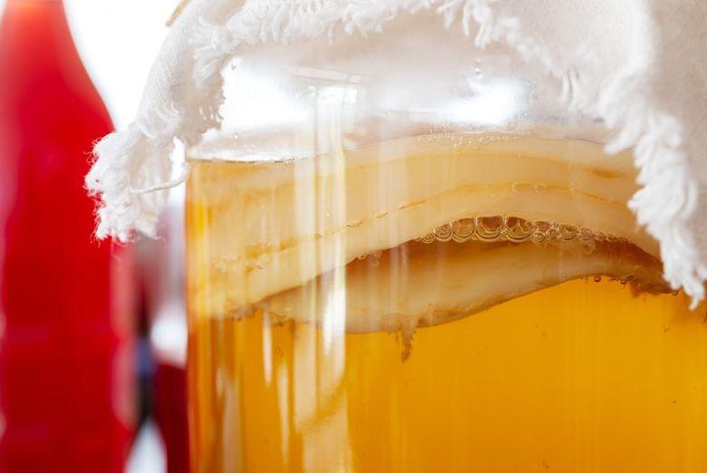 Чайный гриб — антибиотик из банки. Как сделать чайный гриб самому » Перуница